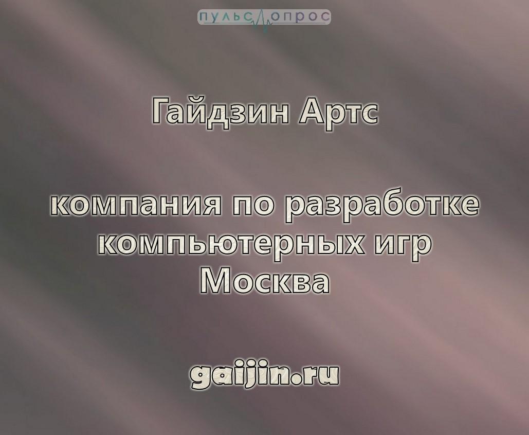 Гайдзин Артс-компания по разработке компьютерных игр